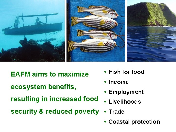 EAFM aims to maximize ecosystem benefits, • Fish for food • Income • Employment