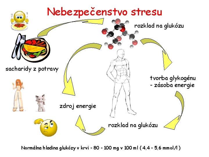 Nebezpečenstvo stresu rozklad na glukózu sacharidy z potravy tvorba glykogénu - zásoba energie zdroj