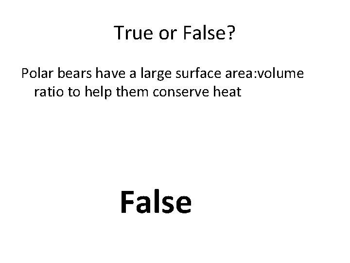 True or False? Polar bears have a large surface area: volume ratio to help