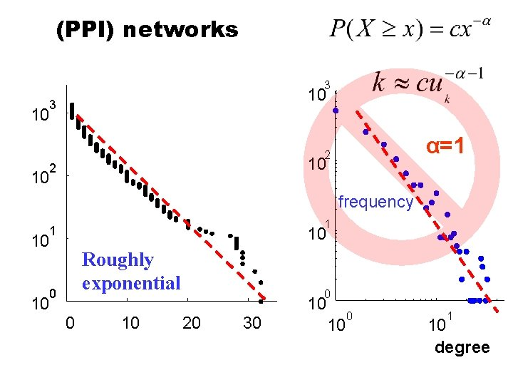 (PPI) networks 3 10 α=1 2 10 frequency 1 1 10 10 Roughly exponential