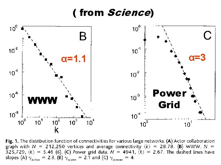 ( from Science) α=3 α=1. 1 WWW Power Grid