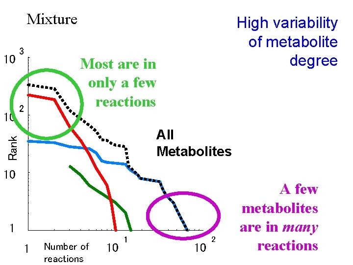 Mixture 10 2 Most are in only a few reactions All Metabolites Rank 10