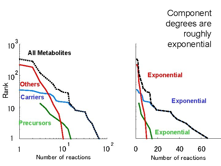 10 Rank 10 Component degrees are roughly exponential 3 All Metabolites 2 Exponential Others