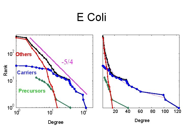 E Coli 2 10 Others Rank -5/4 Carriers 1 10 Precursors 0 10 1