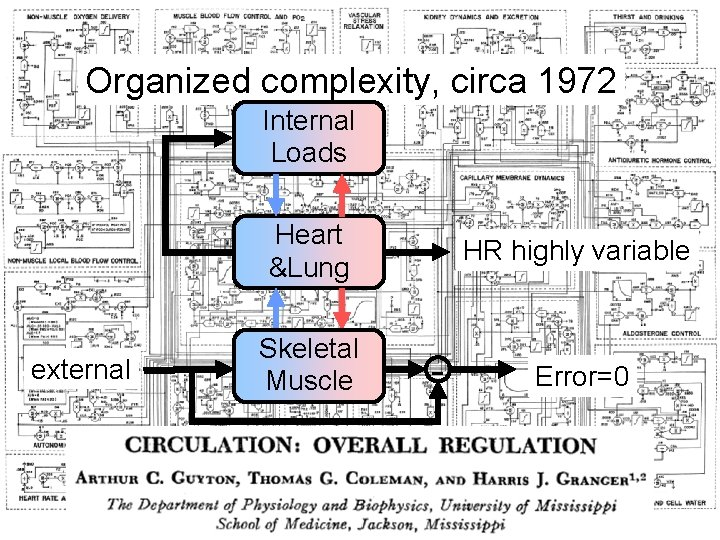 Organized complexity, circa 1972 Internal Loads Heart &Lung external Skeletal Muscle HR highly variable