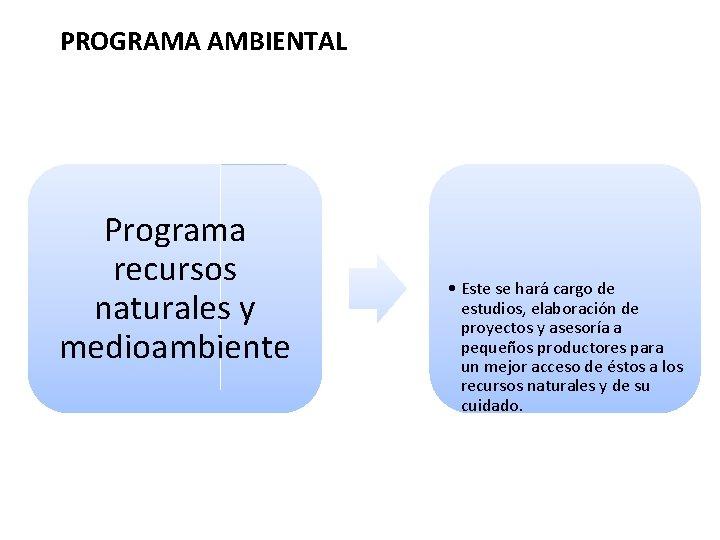 PROGRAMA AMBIENTAL Programa recursos naturales y medioambiente • Este se hará cargo de estudios,