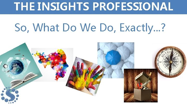 THE INSIGHTS PROFESSIONAL So, What Do We Do, Exactly. . . ?