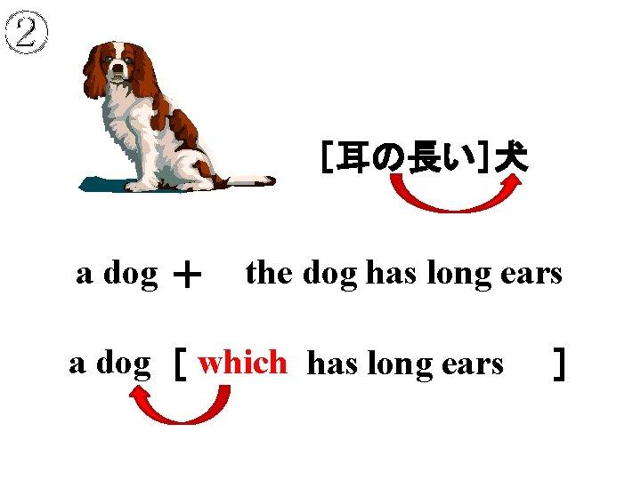 ② [耳の長い]犬 a dog + the dog has long ears a dog [         which