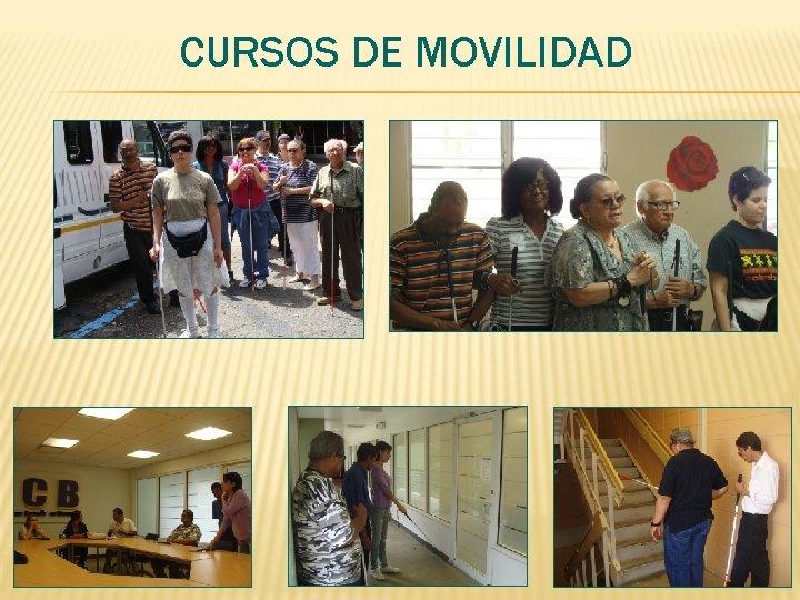 CURSOS DE MOVILIDAD