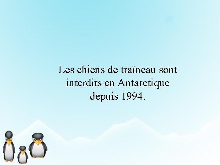 Les chiens de traîneau sont interdits en Antarctique depuis 1994.