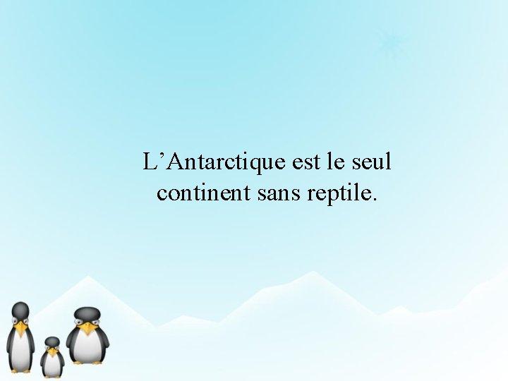 L'Antarctique est le seul continent sans reptile.