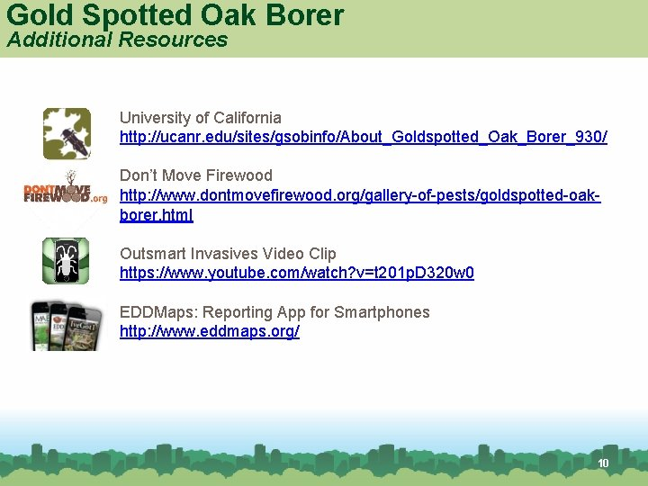 Gold Spotted Oak Borer Additional Resources University of California http: //ucanr. edu/sites/gsobinfo/About_Goldspotted_Oak_Borer_930/ Don't Move