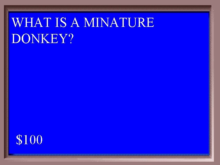 WHAT IS A MINATURE DONKEY? 1 - 100 2 -100 A $100