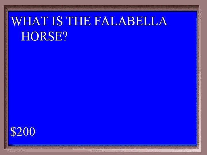 WHAT IS THE FALABELLA HORSE? 1 - 100 2 -200 A $200