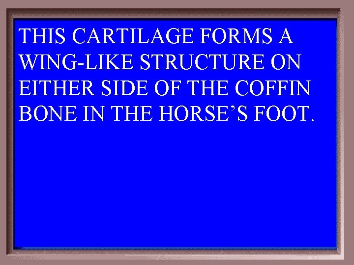 THIS CARTILAGE FORMS A WING-LIKE STRUCTURE ON EITHER SIDE OF THE COFFIN BONE IN