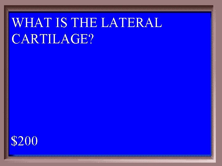WHAT IS THE LATERAL CARTILAGE? 1 - 100 3 -200 A $200