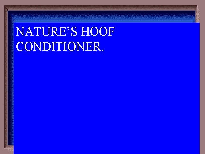 NATURE'S HOOF CONDITIONER. 3 -300