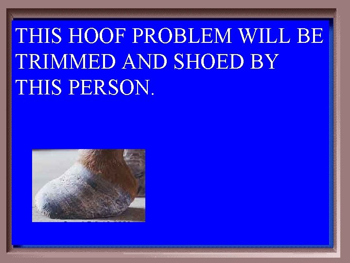 THIS HOOF PROBLEM WILL BE TRIMMED AND SHOED BY THIS PERSON. 3 -500
