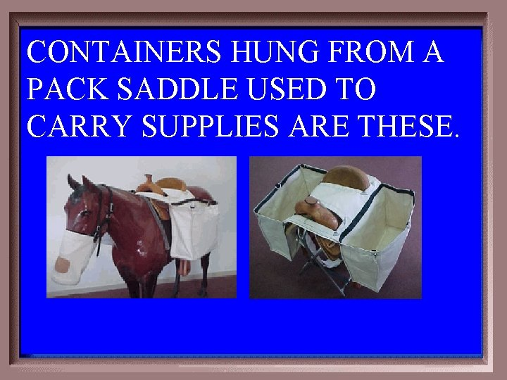CONTAINERS HUNG FROM A PACK SADDLE USED TO CARRY SUPPLIES ARE THESE. 5 -200