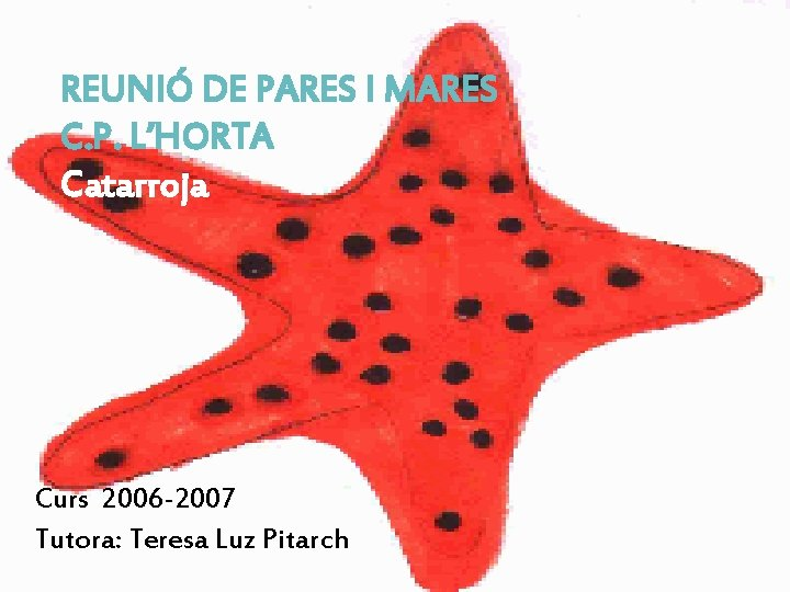 REUNIÓ DE PARES I MARES C. P. L'HORTA Catarroja Curs 2006 -2007 Tutora: Teresa