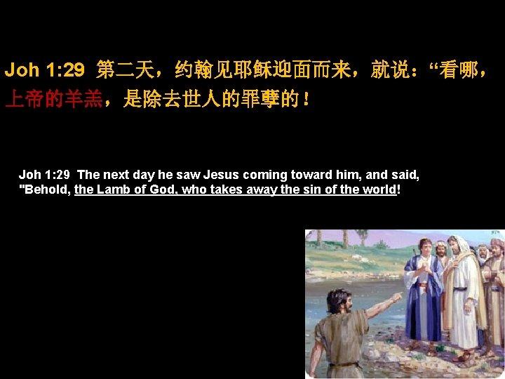 "Joh 1: 29 第二天,约翰见耶稣迎面而来,就说:""看哪, 上帝的羊羔,是除去世人的罪孽的! Joh 1: 29 The next day he saw Jesus"