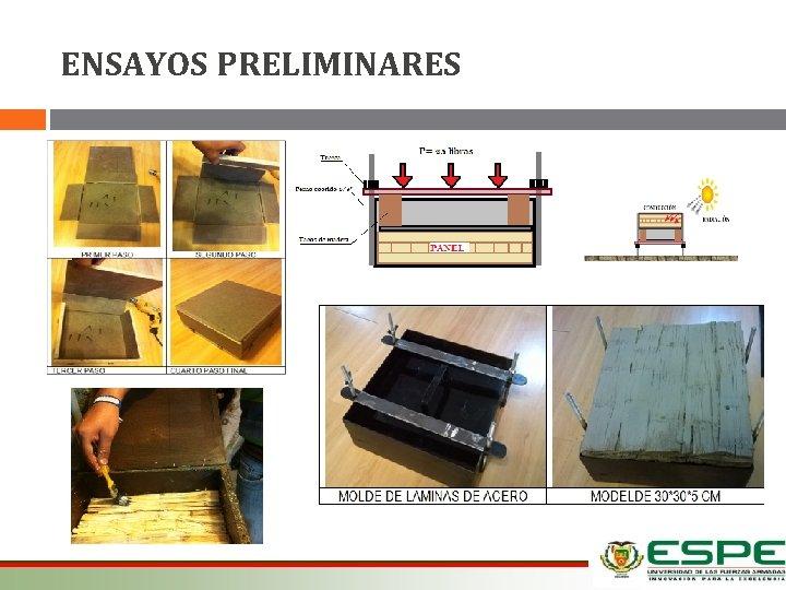ENSAYOS PRELIMINARES 12/03/2021