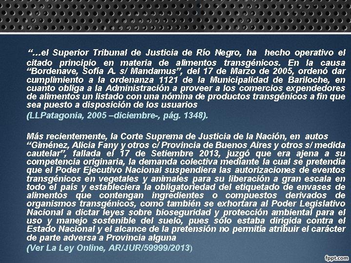 """""""…el Superior Tribunal de Justicia de Río Negro, ha hecho operativo el citado principio"""
