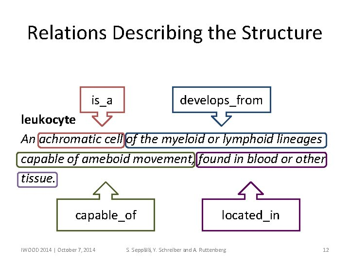 Relations Describing the Structure is_a develops_from leukocyte An achromatic cell of the myeloid or