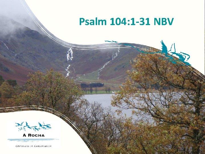 Psalm 104: 1 -31 NBV