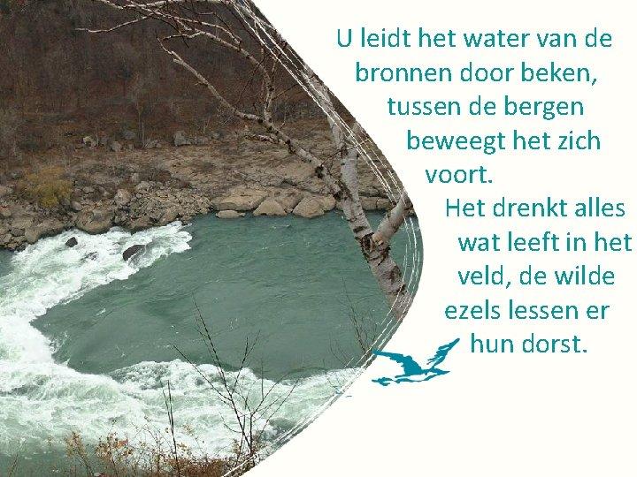 U leidt het water van de bronnen door beken, tussen de bergen beweegt het