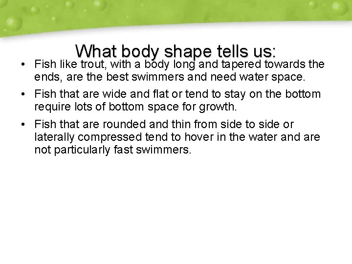 What body shape tells us: • Fish like trout, with a body long and