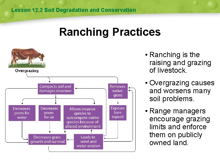Lesson 12. 2 Soil Degradation and Conservation Ranching Practices • Ranching is the raising