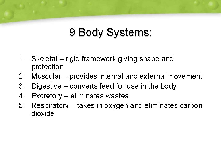 9 Body Systems: 1. Skeletal – rigid framework giving shape and protection 2. Muscular