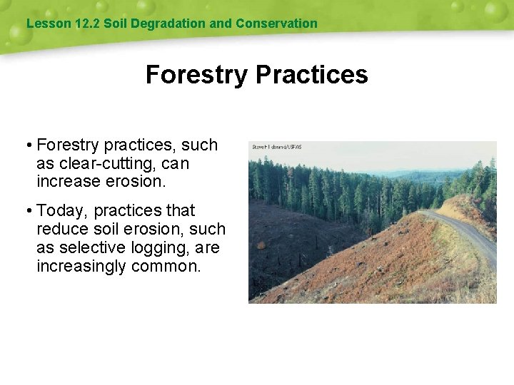 Lesson 12. 2 Soil Degradation and Conservation Forestry Practices • Forestry practices, such as
