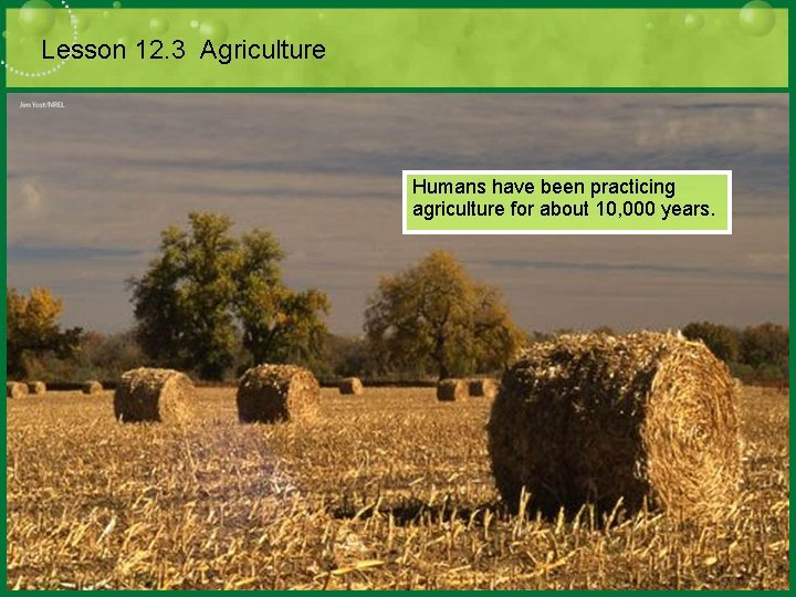 Lesson 12. 3 Agriculture Humans have been practicing agriculture for about 10, 000 years.
