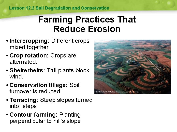 Lesson 12. 2 Soil Degradation and Conservation Farming Practices That Reduce Erosion • Intercropping: