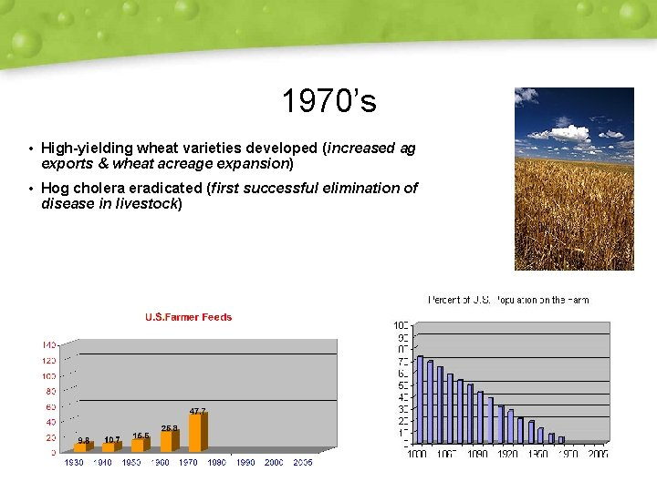 1970's • High-yielding wheat varieties developed (increased ag exports & wheat acreage expansion) •