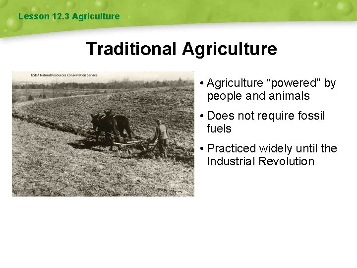 """Lesson 12. 3 Agriculture Traditional Agriculture • Agriculture """"powered"""" by people and animals •"""