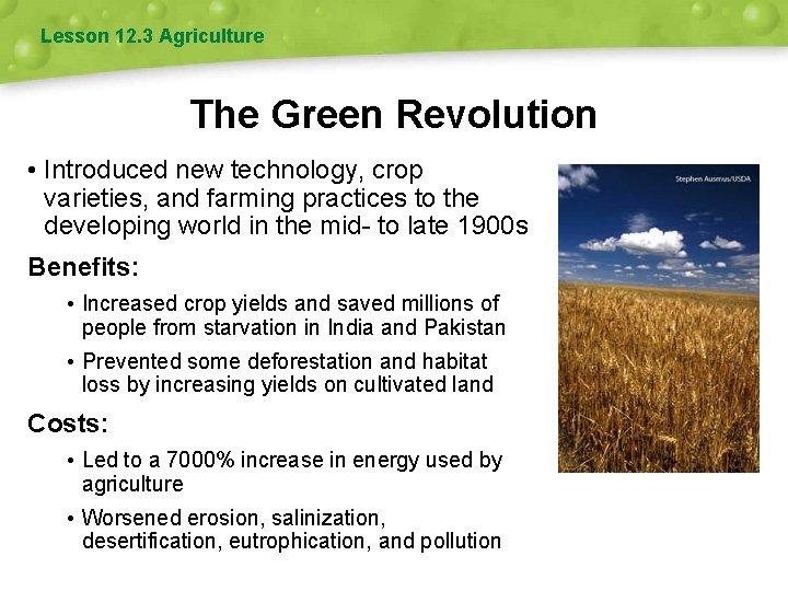 Lesson 12. 3 Agriculture The Green Revolution • Introduced new technology, crop varieties, and