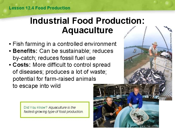 Lesson 12. 4 Food Production Industrial Food Production: Aquaculture • Fish farming in a