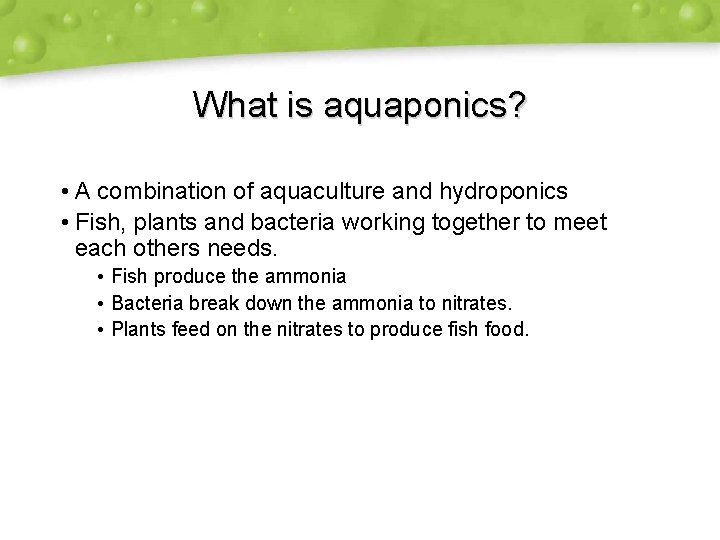 What is aquaponics? • A combination of aquaculture and hydroponics • Fish, plants and