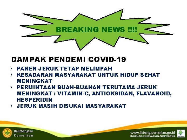 BREAKING NEWS !!!! DAMPAK PENDEMI COVID-19 • PANEN JERUK TETAP MELIMPAH • KESADARAN MASYARAKAT