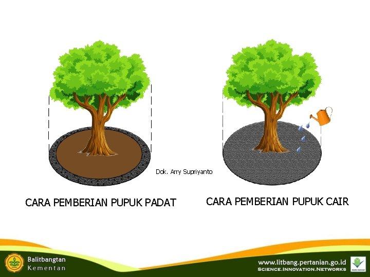 Dok. Arry Supriyanto CARA PEMBERIAN PUPUK PADAT CARA PEMBERIAN PUPUK CAIR