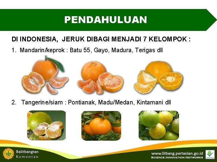 PENDAHULUAN DI INDONESIA, JERUK DIBAGI MENJADI 7 KELOMPOK : 1. Mandarin/keprok : Batu 55,