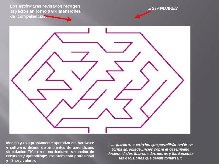 Los estándares revisados recogen aspectos en torno a 6 dimensiones de competencias: Manejo y