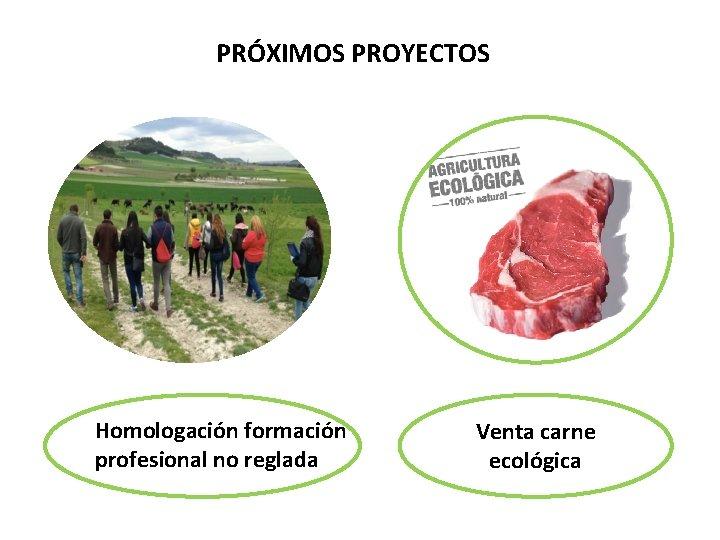 PRÓXIMOS PROYECTOS Homologación formación profesional no reglada Venta carne ecológica