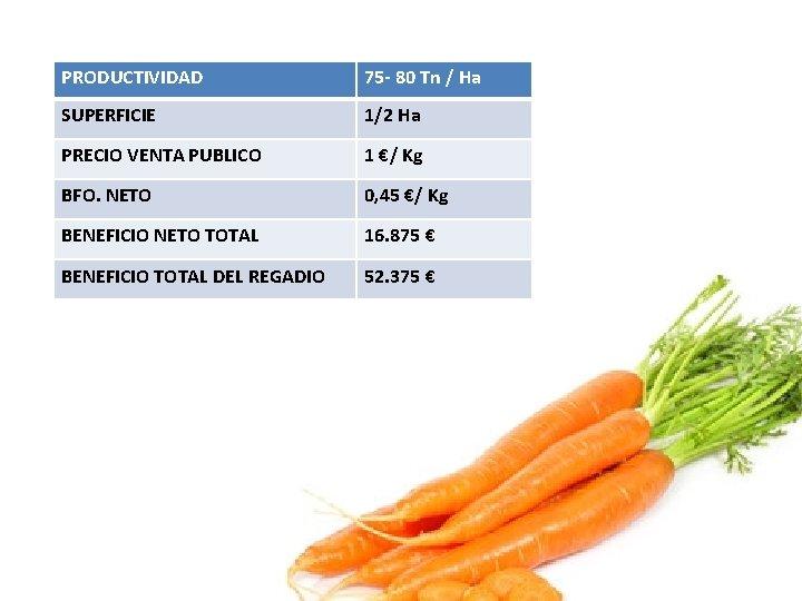 PRODUCTIVIDAD 75 - 80 Tn / Ha SUPERFICIE 1/2 Ha PRECIO VENTA PUBLICO 1