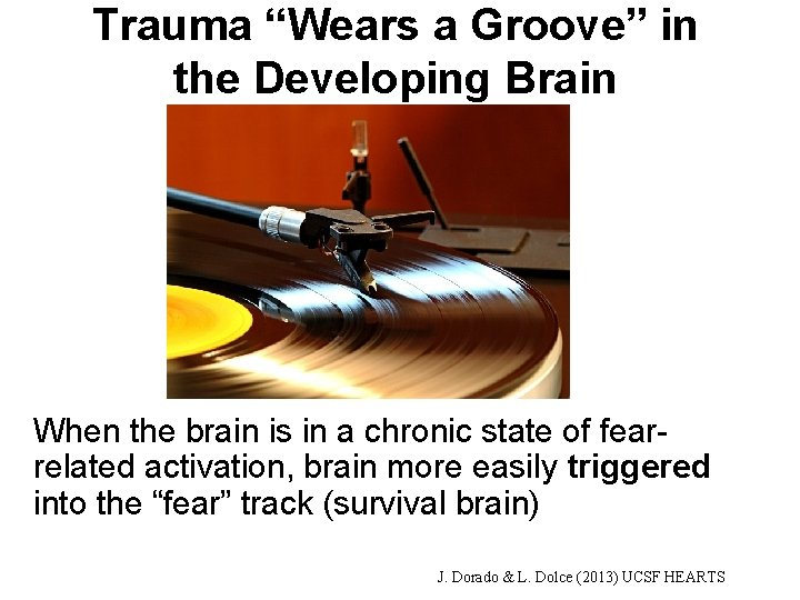 """Trauma """"Wears a Groove"""" in the Developing Brain When the brain is in a"""