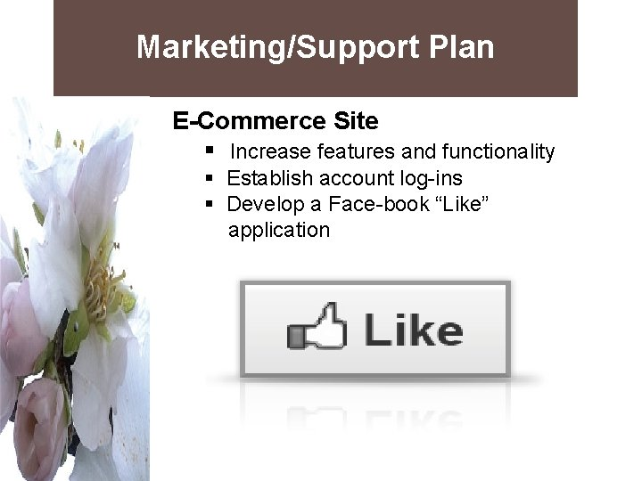 Marketing/Support Plan E-Commerce Site § Increase features and functionality § Establish account log-ins §