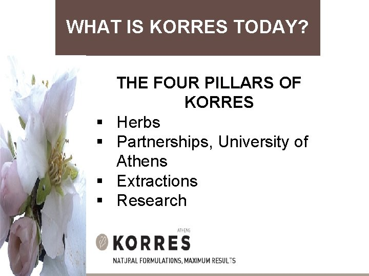 WHAT IS KORRES TODAY? § § THE FOUR PILLARS OF KORRES Herbs Partnerships, University